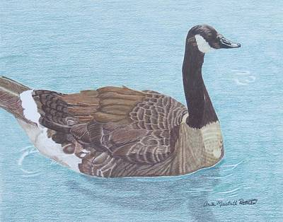 Canadian Geese Painting - Solitude by Anita Putman