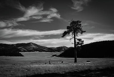 New Mexico Photograph - Solitude At Valles Caldera by Michael Osborne
