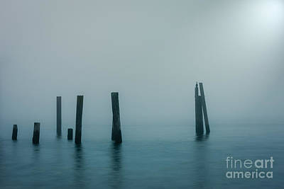 Photograph - Solitude by Carrie Cole
