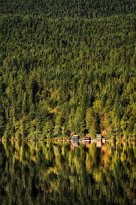 Photograph - Solitude by Dick Pratt