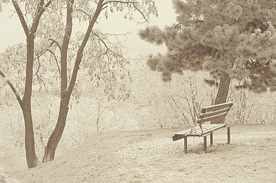 Photograph - Solitude. Gentle Winter by Jenny Rainbow