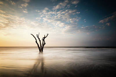 South Carolina Wall Art - Photograph - Solitude by Ivo Kerssemakers
