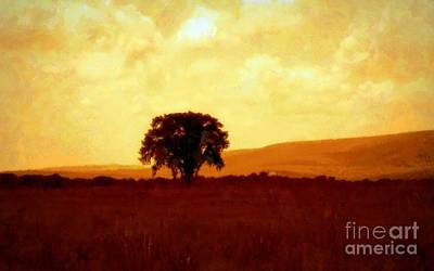 Photograph - Solitude by Janine Riley
