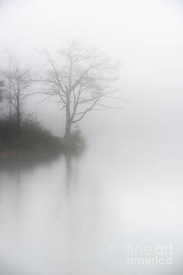 Photograph - Solitude by Nicki McManus