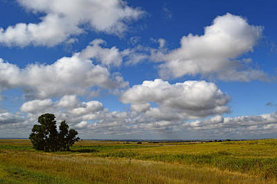Photograph - Solitude On The Prairie - Landscape Photography by Ann Powell