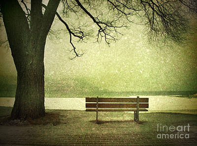 Photograph - Solitude by Tara Turner