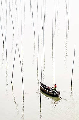 Photograph - Solitude by Usha Peddamatham