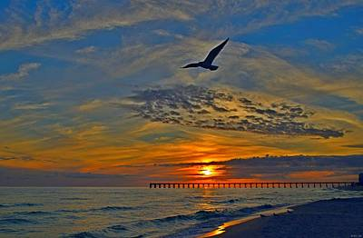 Photograph - 0218 Solo Gull At Sunset On Navarre Beach by Jeff at JSJ Photography
