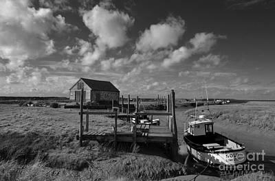 Photograph - Solo by Jon Clifton