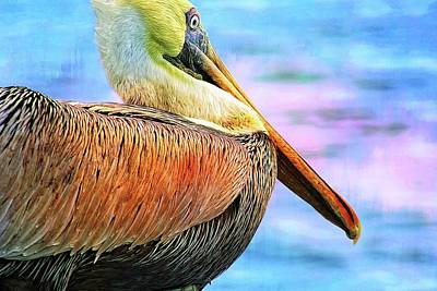 Photograph - Solo Pelican by Alice Gipson