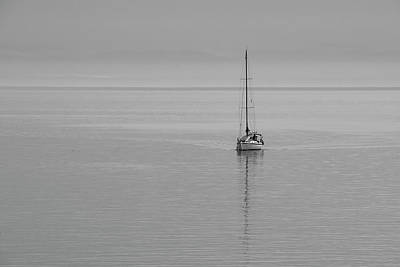 Photograph - Solo Sailing by Inge Riis McDonald