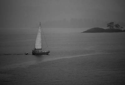 Photograph - Solo Sails by Dale Stillman