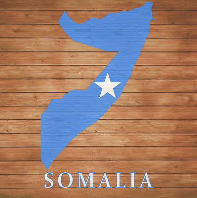 Mixed Media - Somalia Rustic Map On Wood by Dan Sproul