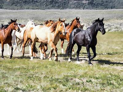 Digital Art - Sombrero Ranch Horse Drive, Galloping Horses by Nadja Rider
