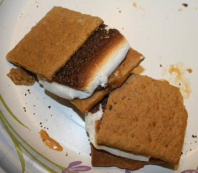 Smores Photograph - Some More Smores by Janet Begelfor