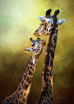 Photograph - Someone To Look Up To - Wildlife Art by Jordan Blackstone