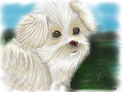 Digital Art - Someone's Pet by Darren Cannell