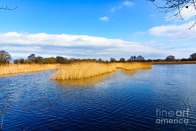 Somerset Levels Art Print