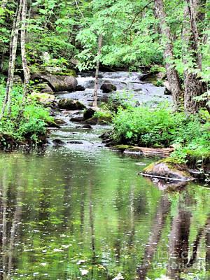 Somesville Stream  Art Print by Elizabeth Dow