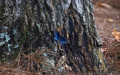 Something Blue Art Print by Jonathan Ellis Keys