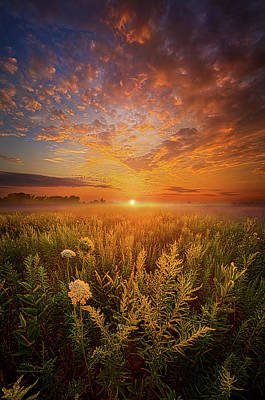 Heaven Photograph - Sometimes Darkness Can Show You The Light by Phil Koch