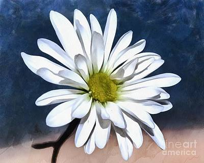 White Flower Photograph - Somewhere Between The Earth And Sky by Krissy Katsimbras