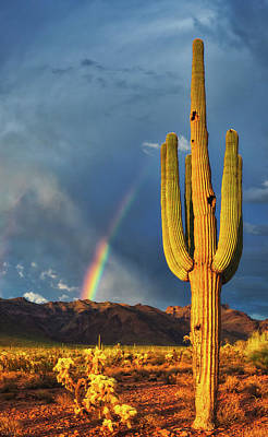 Photograph - Somewhere Over The Rainbow by Rick Furmanek
