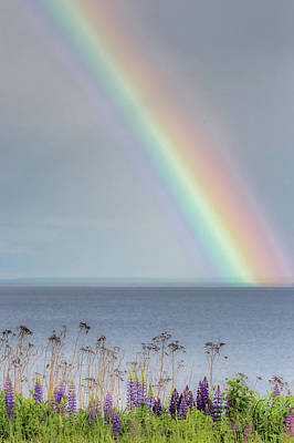 Photograph - Somewhere Under The Rainbow by Mary Amerman
