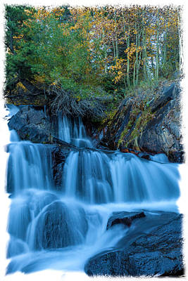 Photograph - Song Of The Fall Vertical by Jonathan Nguyen