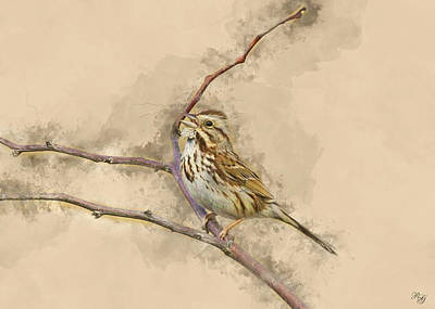 Digital Art - Song Sparrow Art by Ron Grafe