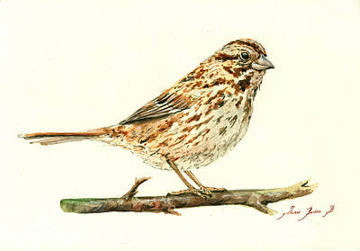 Sparrow Painting - Song Sparrow by Juan  Bosco