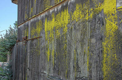 Photograph - Sonoma Barn With Yellow Lichen by David Lawson