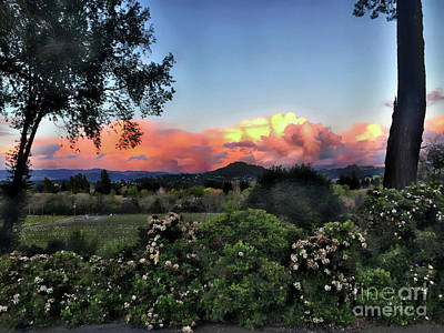 Sonoma County Sunsets Art Print