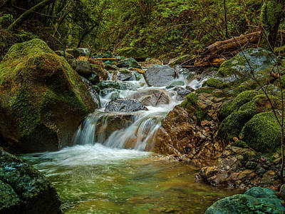 Sonoma Photograph - Sonoma Valley Creek by Bill Gallagher