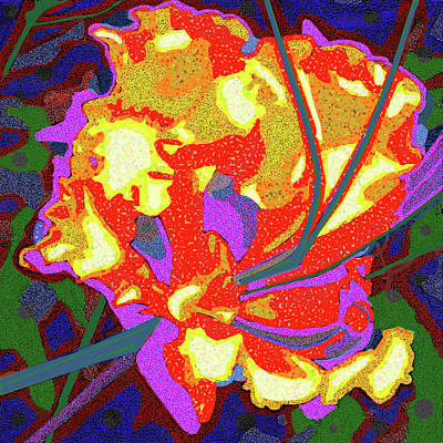 Sonora Desert Bloom Original