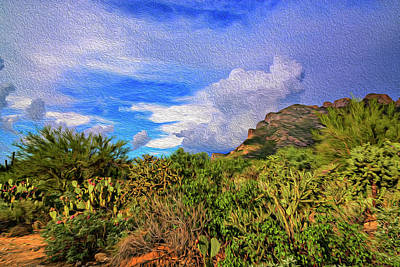 Mark Myhaver Rights Managed Images - Sonoran Afternoon op12 Royalty-Free Image by Mark Myhaver