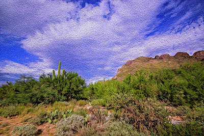 Mark Myhaver Rights Managed Images - Sonoran Afternoon op41 Royalty-Free Image by Mark Myhaver