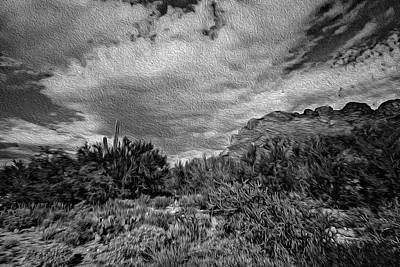 Mark Myhaver Rights Managed Images - Sonoran Afternoon op43 Royalty-Free Image by Mark Myhaver