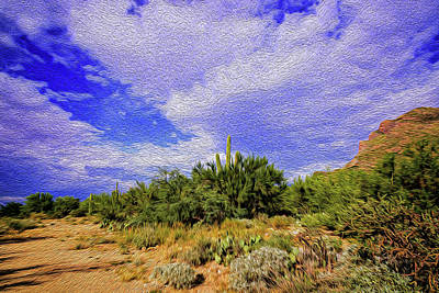 Mark Myhaver Digital Art Rights Managed Images - Sonoran Afternoon op8 Royalty-Free Image by Mark Myhaver
