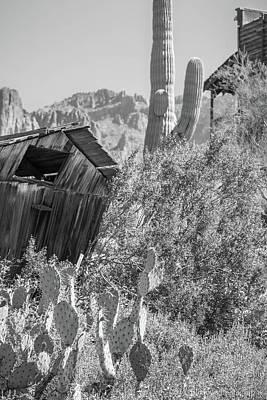 Photograph - Sonoran Cabin by Aaron Burrows