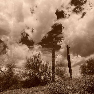 Photograph - Sonoran Desert Cloudfest by Bill Tomsa