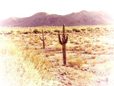 Photograph - Sonoran Desert Dreamscape by Judy Kennedy