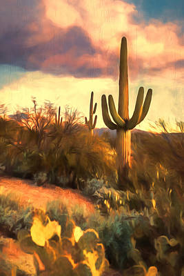 Photograph - Sonoran Desert Morn by Susan Rissi Tregoning