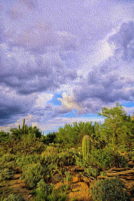 Photograph - Sonoran Desert Op14 by Mark Myhaver