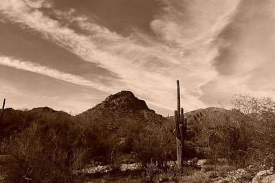 Painting - Sonoran Desert Sky by Bill Tomsa