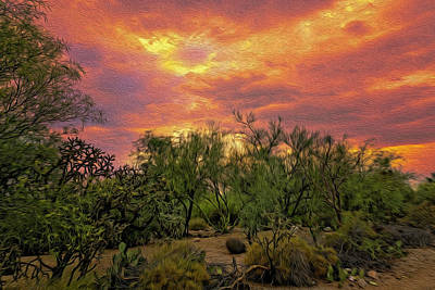 Photograph - Sonoran Desert Sunset Op46 by Mark Myhaver