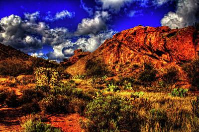 Photograph - Sonoran Desert Winter No. 1 by Roger Passman