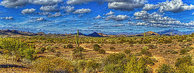 Photograph - Sonoran Panorama by Roger Passman