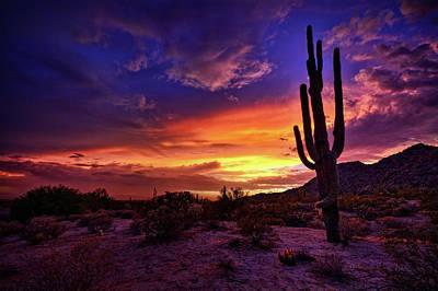 Photograph - Sonoran Skies Alive With Color  by Saija Lehtonen