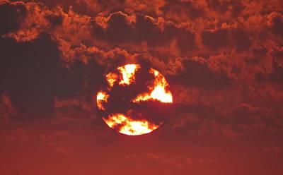 Photograph - Sonoran Sun by Judy Kennedy